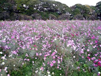 目黒雅叙園へのバスツアー_d0020309_22215730.jpg
