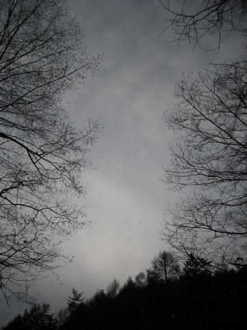 冬の野原_c0107829_22515741.jpg