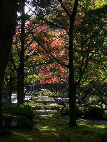 京の紅葉を訪ねて vol.4 しょうざん光悦芸術村_c0057946_18514317.jpg