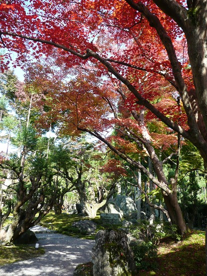 京の紅葉を訪ねて vol.4 しょうざん光悦芸術村_c0057946_1852493.jpg