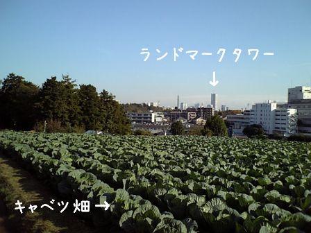f0158956_183130100.jpg
