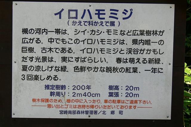 a0043276_20131096.jpg