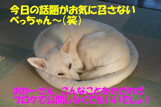 f0121712_10301686.jpg