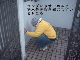f0031037_1630484.jpg
