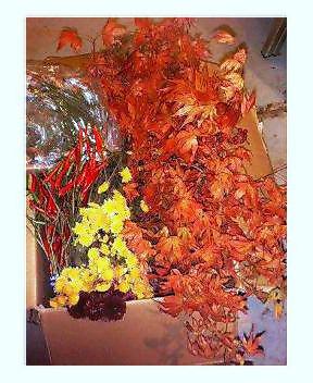 「秋」が届きました!_a0083140_711685.jpg