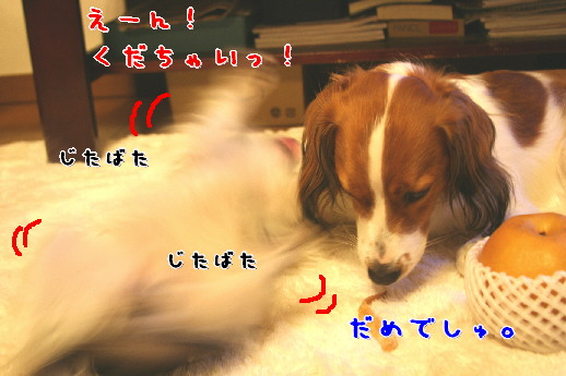 d0013149_058873.jpg