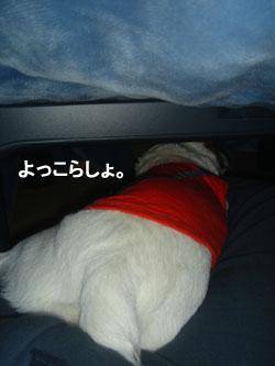 b0098652_093918.jpg