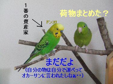 b0082757_14432650.jpg