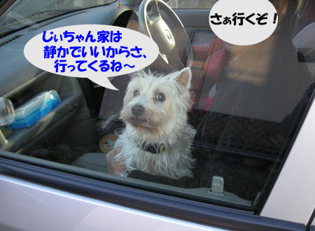 e0066883_1941693.jpg
