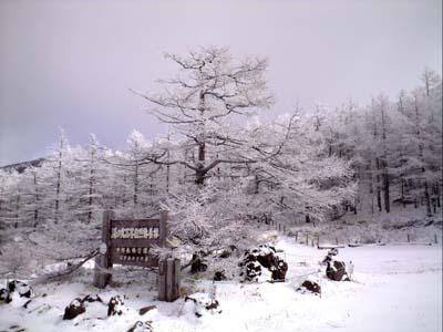 スキー場開き_e0120896_62459100.jpg