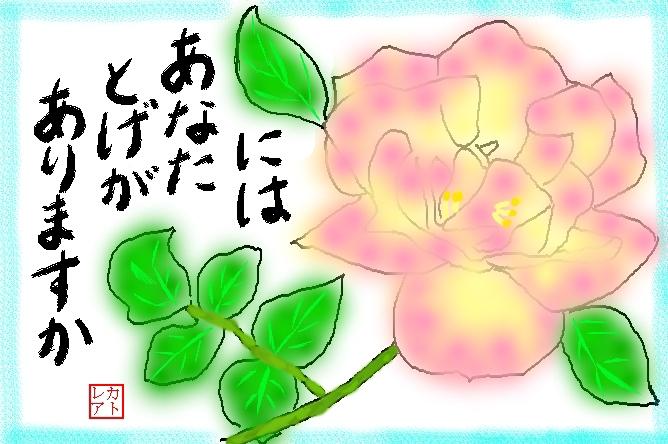f0124098_16271966.jpg