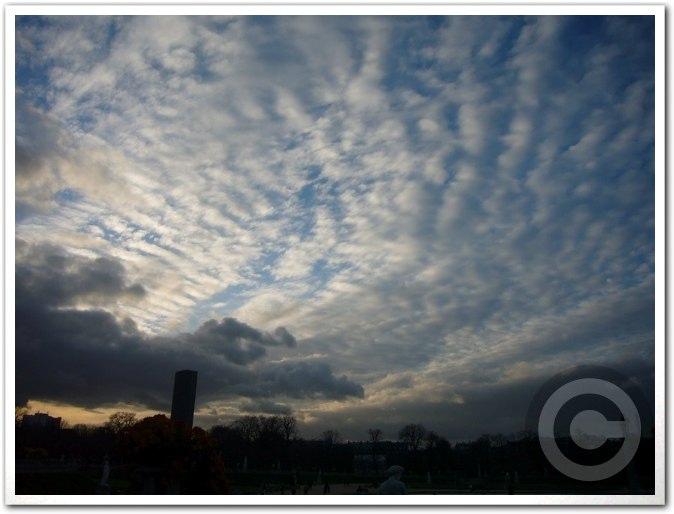 ■今日のパリの空(11月23日)_a0008105_8215494.jpg