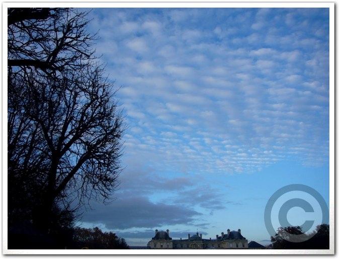 ■今日のパリの空(11月23日)_a0008105_8222393.jpg