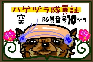 f0040805_2111441.jpg
