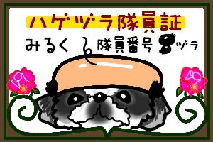 f0040805_215577.jpg