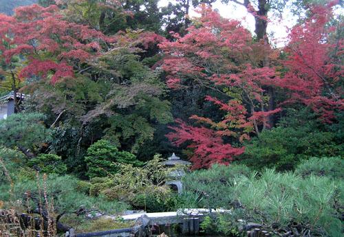 南禅寺3 南陽院_e0048413_19802.jpg