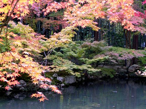 南禅寺4 天授庵_e0048413_2059311.jpg