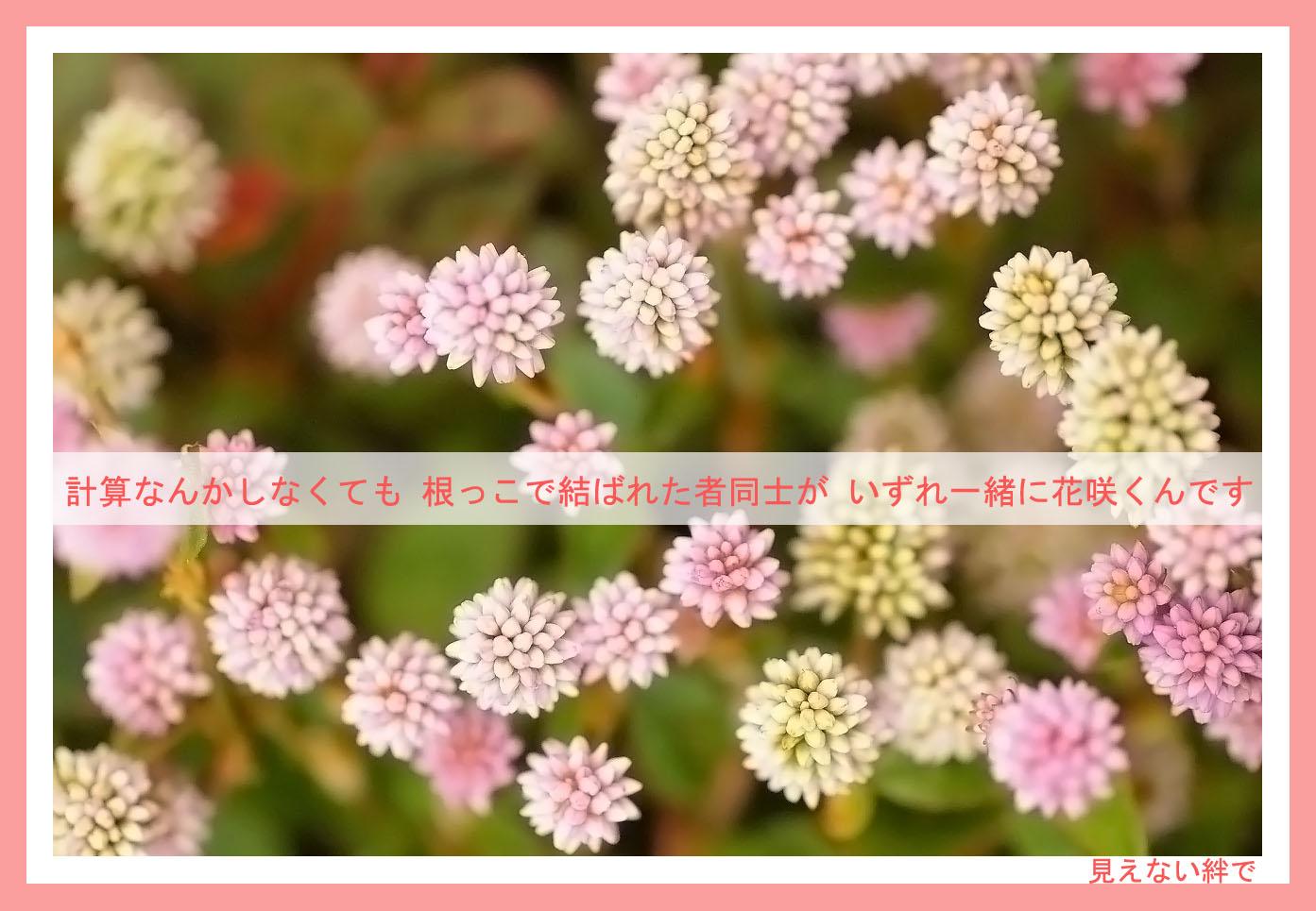 c0112724_20375733.jpg
