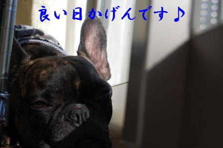 c0130324_0114769.jpg