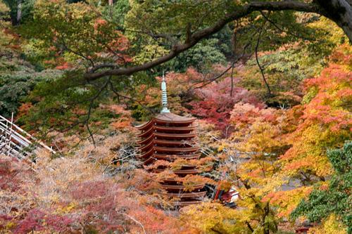 飛鳥から談山神社 この秋落慶された美しい十三重塔_d0055236_10432842.jpg