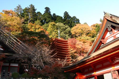 飛鳥から談山神社 この秋落慶された美しい十三重塔_d0055236_1046346.jpg