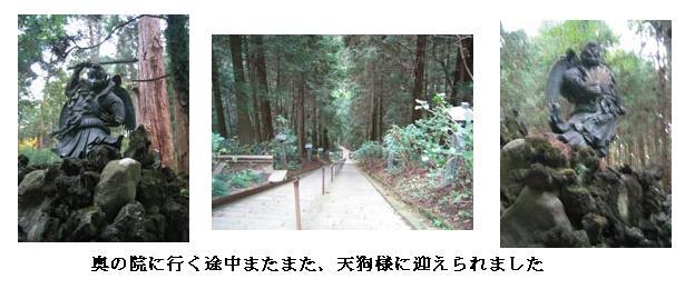 f0110488_1723572.jpg