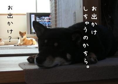 f0068501_0145092.jpg