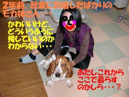 f0121712_2243974.jpg