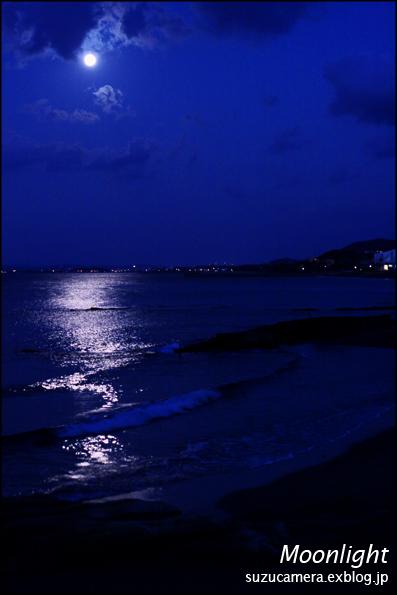 月光_f0100215_21244668.jpg