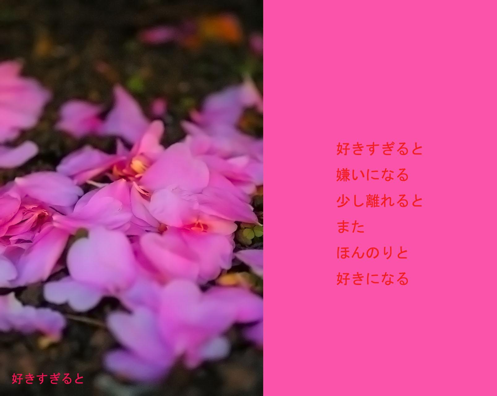 c0112724_22134831.jpg