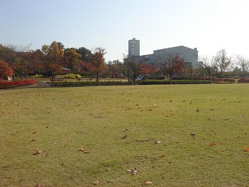 日本庭園(芦城公園)の散歩_f0114128_2117017.jpg