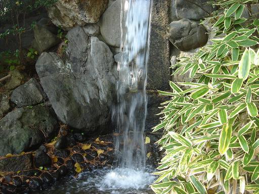 日本庭園(芦城公園)の散歩_f0114128_2172040.jpg
