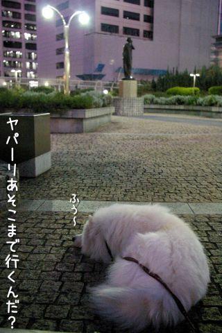修行の旅~行き編~_c0062832_18301687.jpg