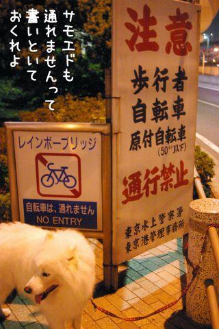 修行の旅~行き編~_c0062832_1830461.jpg