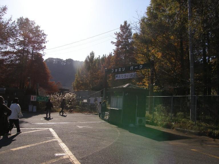 東京での王国ラスト訪問 その1_f0128542_313779.jpg