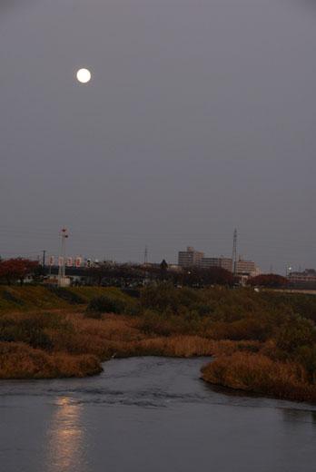 月と太陽_c0093046_831528.jpg