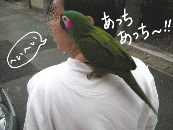 f0132055_222813.jpg