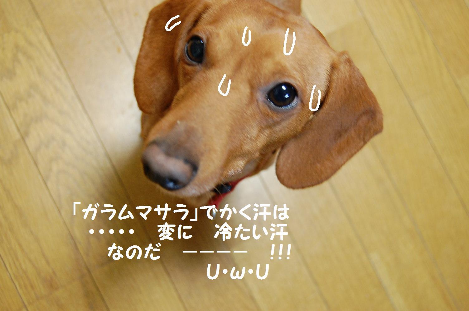 b0112758_17385654.jpg