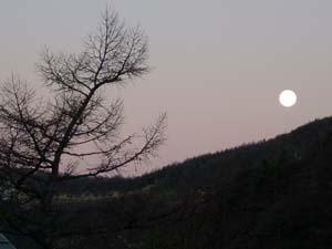 日の出前の静寂の一時_e0120896_743731.jpg