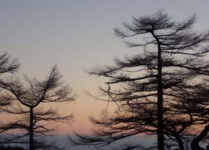 日の出前の静寂の一時_e0120896_764317.jpg