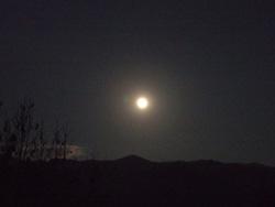 昨夜の満月_f0067107_1658323.jpg