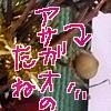 b0019611_17502587.jpg