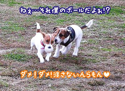 f0129214_124810100.jpg