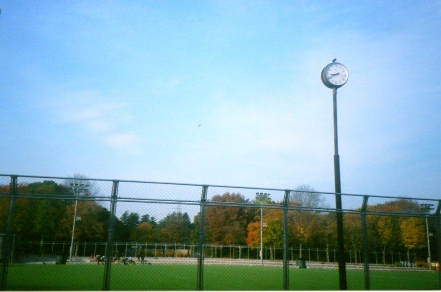 秋晴れの空に。_a0104621_17453958.jpg
