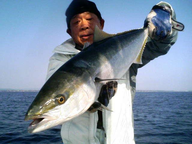 秋刀魚襲来…_e0102422_8203926.jpg