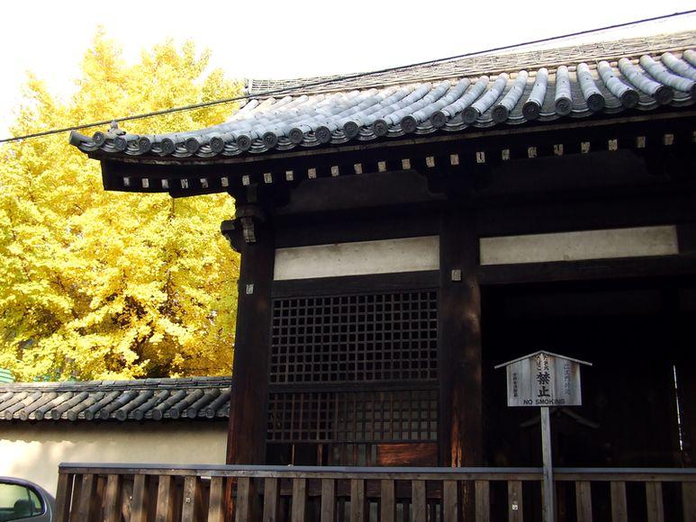 「紅葉の東福寺・・・Ⅰ」_d0133024_2053479.jpg