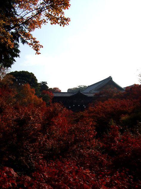 「紅葉の東福寺・・・Ⅰ」_d0133024_20545475.jpg