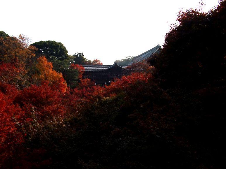 「紅葉の東福寺・・・Ⅰ」_d0133024_20551742.jpg
