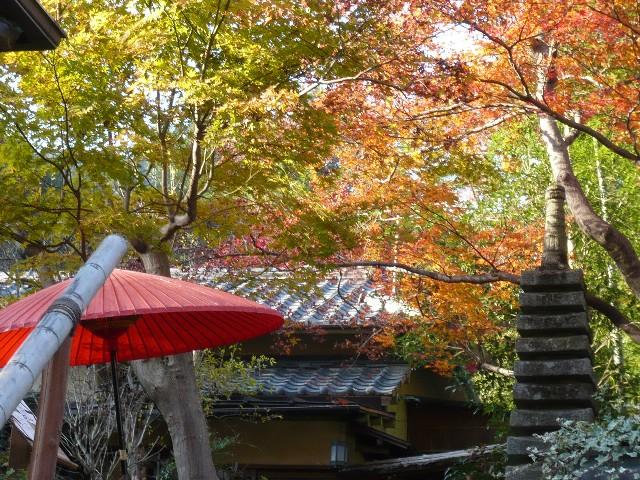 秋を感じに、御岳渓谷へ!_b0023328_1949720.jpg