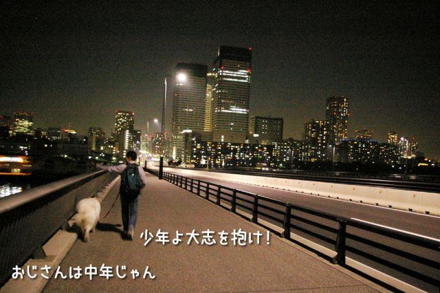 修行の旅~完結編~_c0062832_1725477.jpg